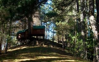 casette-nel-bosco-natura-Silavventura-Lorica-Sila-Lago-Arvo